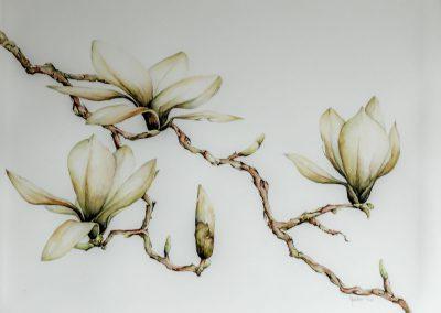 Gele magnolia